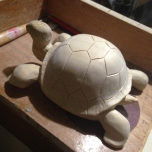Tortue #19