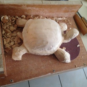 Tortue #8