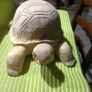 Tortue 2 #15